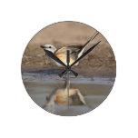 Flycatcher Scissor-atado reflejado en la charca Reloj Redondo Mediano