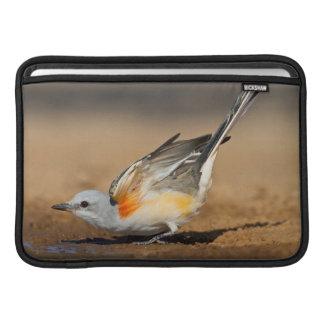 Flycatcher Scissor-Atado (Tyrannus Forficatus) Funda Para Macbook Air