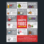 """Flyers- The World&#39;s Most Dangerous Food For Dogs Flyer<br><div class=""""desc"""">By Lili Chin &amp; Design Lab Creative Studio</div>"""