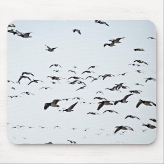 Flying Away Mouse Pad