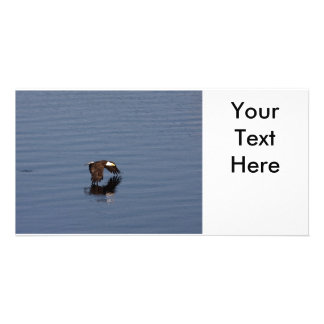 Flying Bald Eagle Card