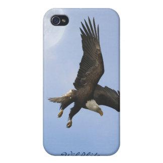 Flying Bald Eagle & Moon Wildlife iPhone Case
