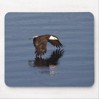 Flying Bald Eagle Mouse Pad