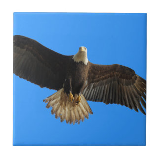 Flying Bald Eagle on Blue Wildlife Gift Ceramic Tile