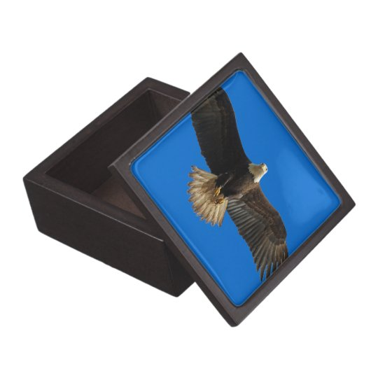 Flying Bald Eagle Wildlife Gift Keepsake Box