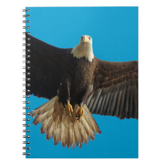 Flying Bald Eagle Wildlife Gift Note Book