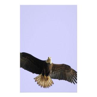 Flying Bald Eagle Wildlife Gift Stationery