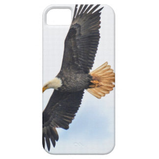 Flying Bald Eagle Wildlife Photograph iPhone 5 Covers