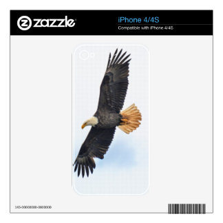 Flying Bald Eagle Wildlife Photograph Skin For iPhone 4