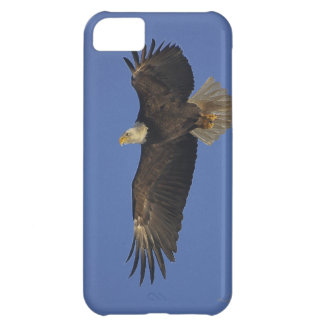 Flying Bald Eagle Wildlife-supporter Art Cover For iPhone 5C