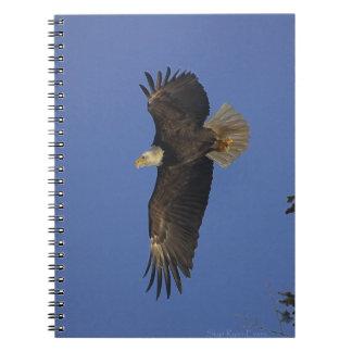 Flying Bald Eagle Wildlife-supporter Art Notebook