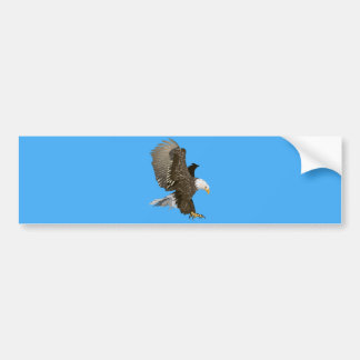 Flying Bald Eagle with Outstretched Wings Bumper Sticker