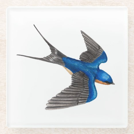Flying Barn Swallow Glass Coaster