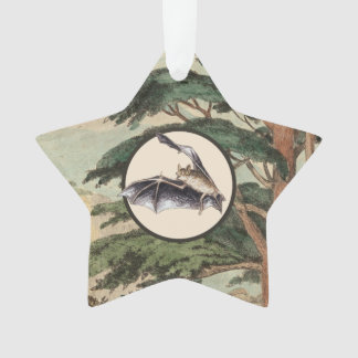 Flying Bat In Natural Habitat Illustration