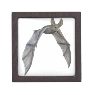 Flying Bat with Wings on Downstroke Gift Box