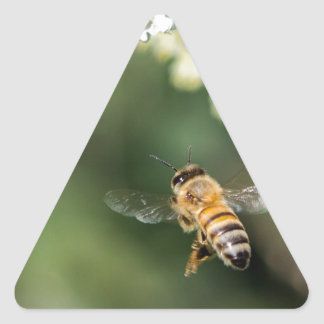 FLying Bee Triangle Sticker