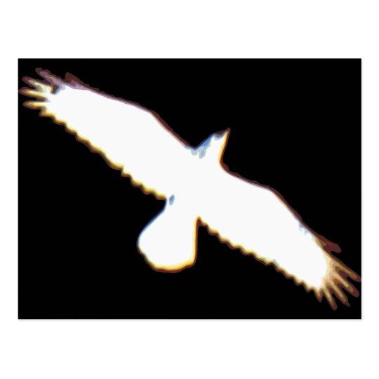 Flying Bird Silhouette Postcard