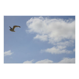 Flying (Bird, Sky, Clouds) Poster