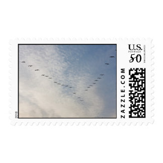 Flying birds postage stamps