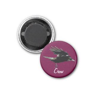 Flying Black Crow Birdlover Magnet