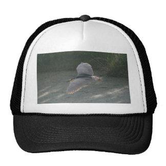 Flying Black-Crowned Night-Heron Trucker Hat