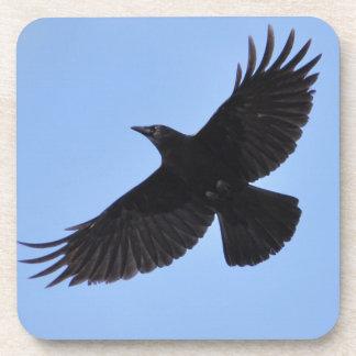 Flying Black Raven Corvid Crow-lover Photo Design Beverage Coaster