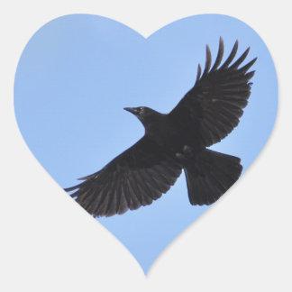 Flying Black Raven Corvid Crow-lover Photo Design Heart Sticker