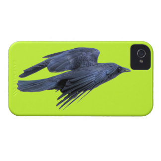 Flying Black Raven Gothic, Celtic, Wiccan iPhone 4 Case-Mate Case