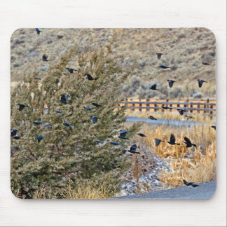 Flying Blackbirds Mouse Pad