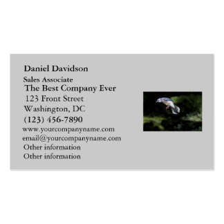 Flying Blue Jay Business Card