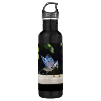Flying Blue Jay Photo Stainless Steel Water Bottle