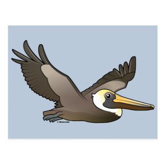 Flying Brown Pelican Postcard