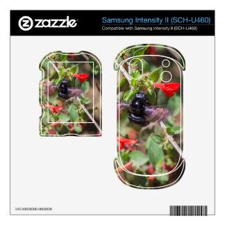 Flying Bumblebee Samsung Intensity Skins