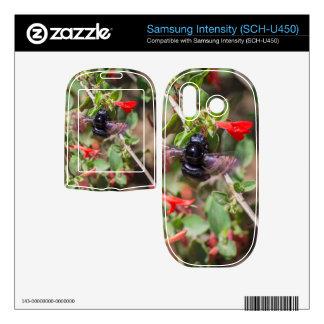 Flying Bumblebee Samsung Intensity II Skin
