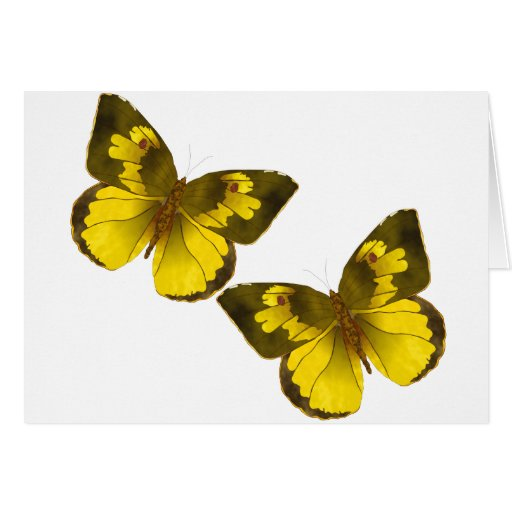 Flying Butterflies Card