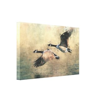 Flying Canada Geese wrappedcanvas