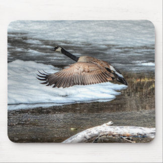 Flying Canada Goose, Pond & Snow Wildlife Photo Mouse Pad