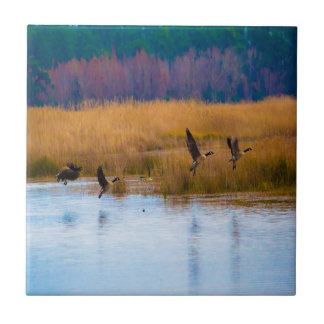 Flying Canadian Geese Ceramic Tile