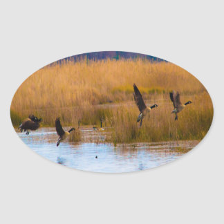 Flying Canadian Geese Oval Sticker