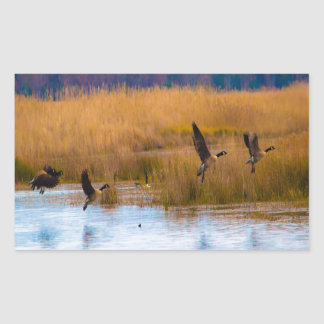 Flying Canadian Geese Rectangular Sticker