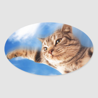 flying cat oval sticker