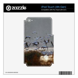 Flying cranes iPod touch 4G decal
