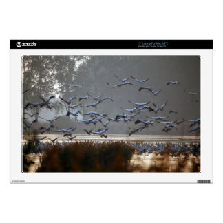 Flying cranes on a lake decals for laptops