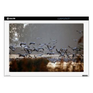 Flying cranes on a lake laptop decal