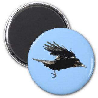 Flying Crow Birdlover Wildlife Supporter Magnet