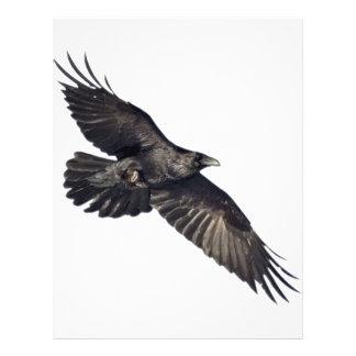Flying Crow Flyer