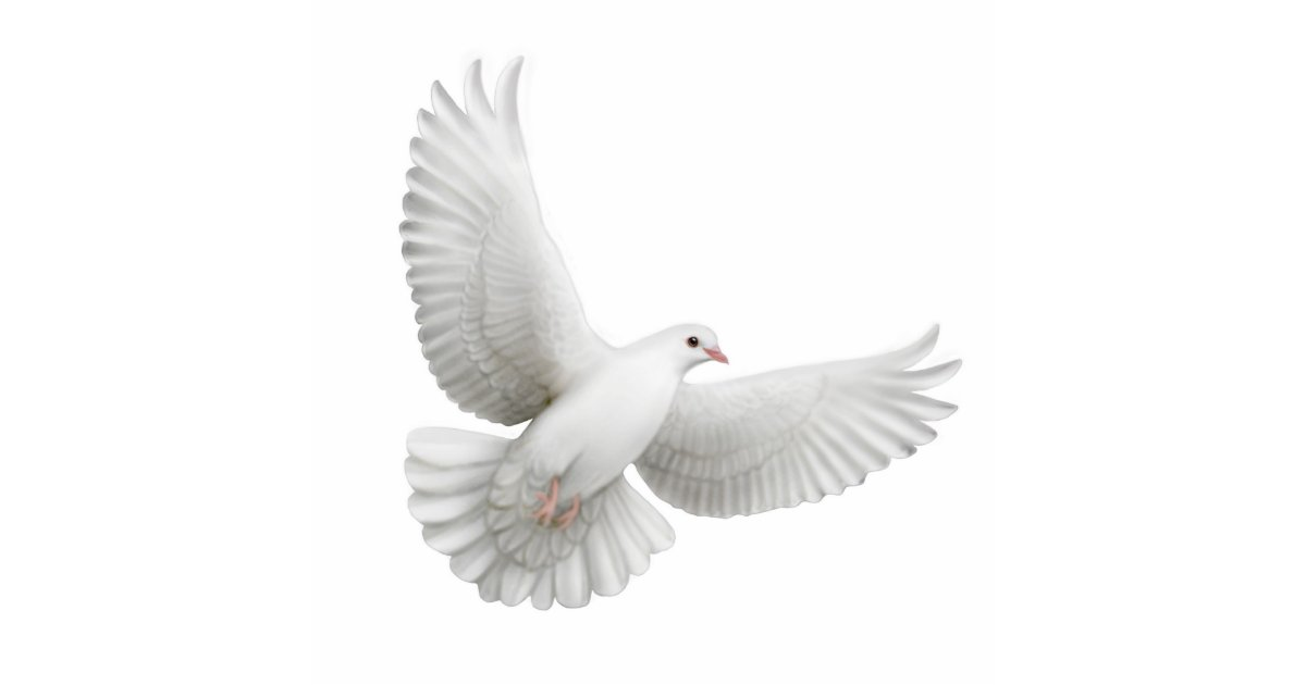Flying Dove Ornament | Zazzle
