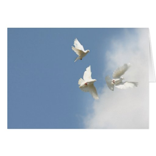 Flying doves greeting card