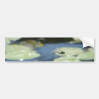 flying dragonfly car bumper sticker
