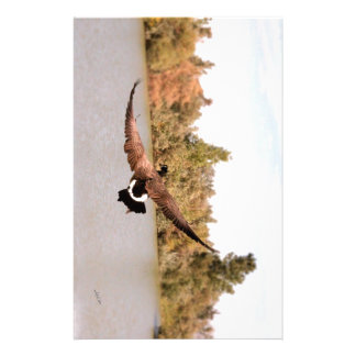 flying duck over water photograph stationery